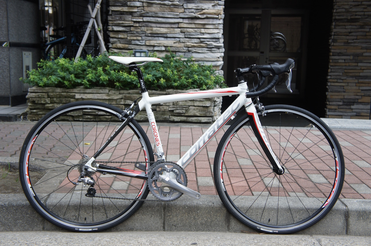 CORRATEC R.T. CORONES コラテック Carbon Backstay